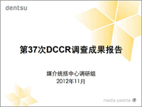 第37次DCCR调查成果报告.jpg