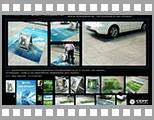 中国环境保护基金会 停车位之动物系列.jpg